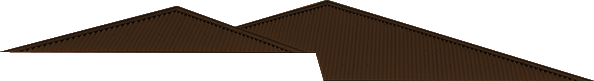 Roof 21